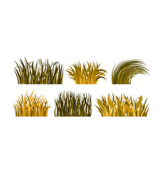 Different kind of yellow and brown autumn grass vector