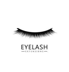 eyelash logo template eyelash extension concept vector image