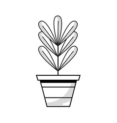 Line plant with leaves inside flowerpot design vector