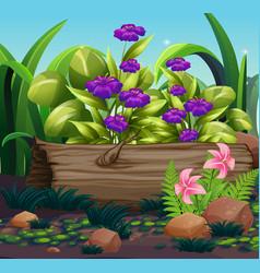 Nature scene with purple flowers in garden vector