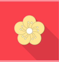 plum blossom flat icon with long shad vector image