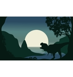 Silhouette of one tyrannosaurus and moon vector image