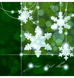snowflake ornaments vector image vector image