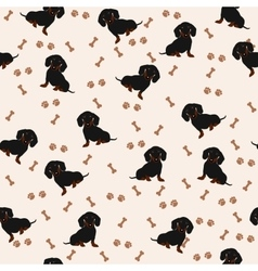 Dogs Dachshund Seamless pattern Dog vector image vector image