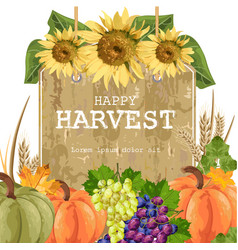 autumn harvest with pumpkins grapes sunflower vector image