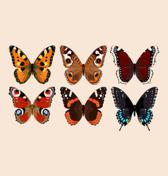 collection butterflies vector image