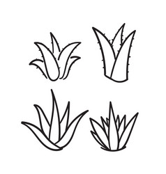 Hand drawn doodle aloe vera icon isolated vector