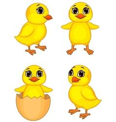 Funny chick cartoon vector image vector image