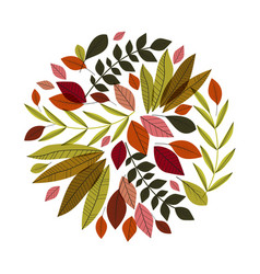autumn leaves decoration vector image vector image
