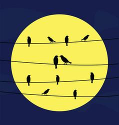 Birds on wires5 vector