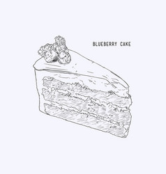 blueberry layer cake hand drawn sketch water vector image