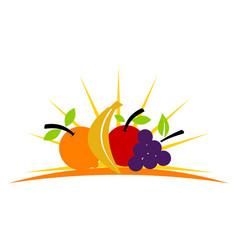 Fruit store vector