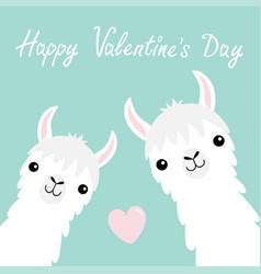 Happy valentines day llama alpaca animal set face vector