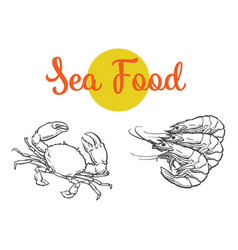 Sketch cartoon sea lobster isolated vector