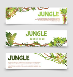 tropical plants banner jungle leaves and vector image