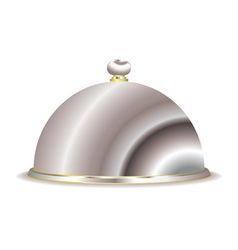 silver food serving cloche vector image vector image