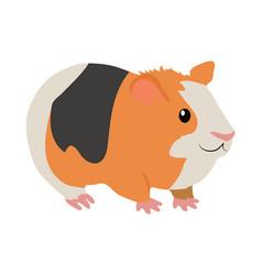 guinea pig cartoon icon in flat design vector image