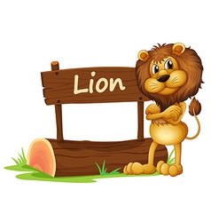 A wild lion vector image vector image
