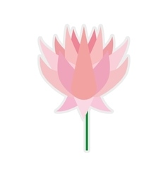 Lotus icon indian flower design graphic vector