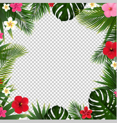 Palm leaf and flowers isolated transparent vector