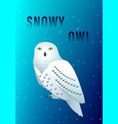 Snowy owl vector
