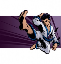 karate kick vector image