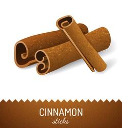 cinnamon icon vector image