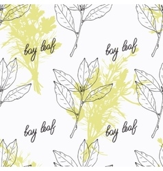 Hand drawn bay leaf branch and handwritten sign vector
