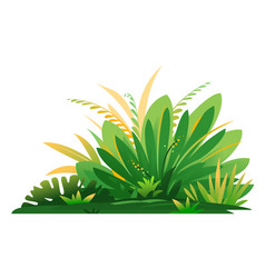 Jungle plant composition isolated vector
