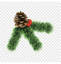 Pine tree branch icon realistic style vector