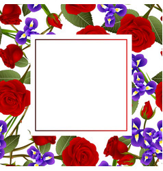 Red rose and iris flower banner card vector