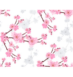 sakura branch with gentle lush flowers and cherry vector image
