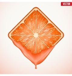Square slice of grapefruit with fresh juice vector