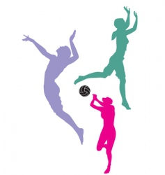 volleyball players vector image