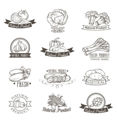 Vintage label with vegetables hand drawn vector image