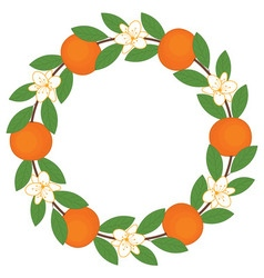 Orange Wreath vector image vector image