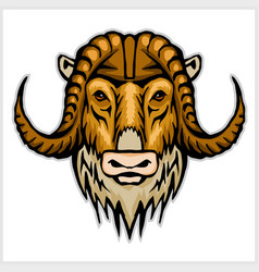 buffalo head emblem isolated on white background vector image