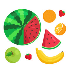 fruits collection summer set vector image