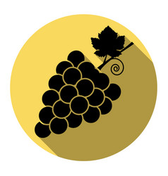 grapes sign flat black icon vector image
