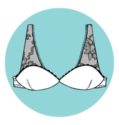 Lacy sexy bra vector image