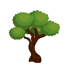 Large and leafy tree isolated icon design vector
