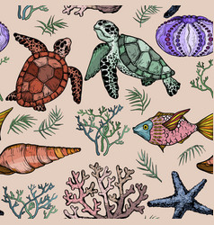 seamless pattern with ocean life organisms vector image
