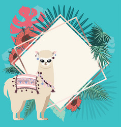 alpaca with exotic leaves and flowers vector image