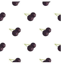 Fresh chokeberry or aronia berry pattern flat vector