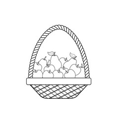 fruit apple pear in basket vector image