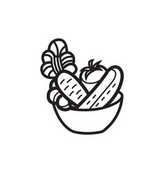 Vegetable salad in a bowl vector