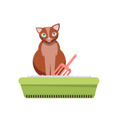 cat sitting in litter box clipart image kitty vector image
