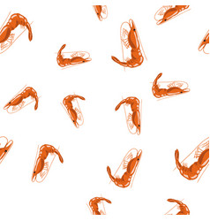 cooked red shrimps seamless pattern vector image vector image