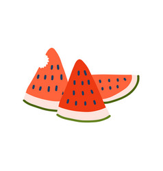 fresh juicy watermelon icon tasty ripe fruit vector image