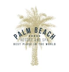 Palm beach logo template vector